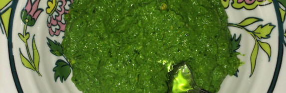 Homemade Kale and Cashew pesto